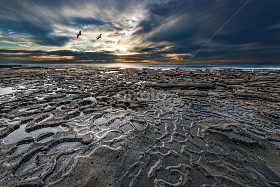 Unearthly by Alan Crosthwaite - Landscapes Sunsets & Sunrises ( tidepool, san diego, tidepools, reef, sunset, dramatic, reflections, tourism, travel, la jolla, potholes, tidal pools )