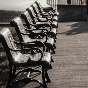 Benches by Tammy Drombolis - Artistic Objects Furniture ( , public, bench, furniture, object )