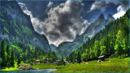 HD自然の背景