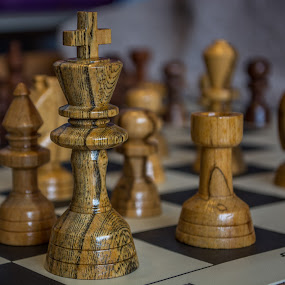 The Kings Perspective by Judy Soper - Artistic Objects Other Objects ( bishop, wood, queen, walnut, chess, king, rook, pawn, maple )