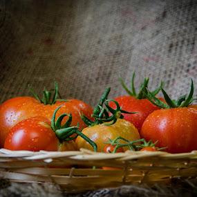 Tomatoes by Fitria Ramli - Artistic Objects Still Life ( macro, still life, fruits, artistic, nikon, tomatoes, closeup )