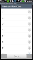 Screenshot of Download Manager