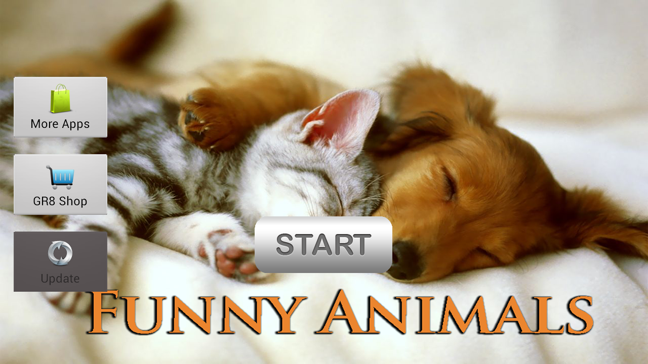 Funny Animals - screenshot