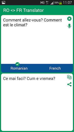 Romanian French Translator