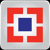 HDB Fin Services Ltd AR2012-13