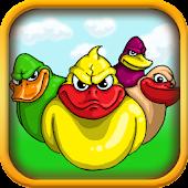 Angry Ducks