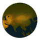 Age of Civilizations Asia v1.15