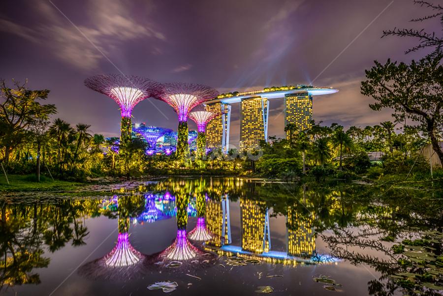 Marina Bay Sands by Alex Shanti - City,  Street & Park  Night ( reflection, park, long exposure, night, singapore, , Urban, City, Lifestyle )