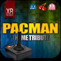 Pacman GO Launcher EX