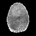 Fingerprint On Screen icon