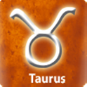 Taurus  Business Compatibility icon