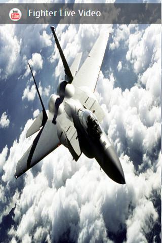 flight fighters simulator