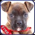 Boxer+ Free icon