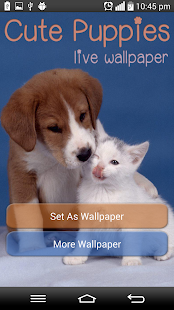 App cute Puppies Live Wallpaper apk for kindle fire ...