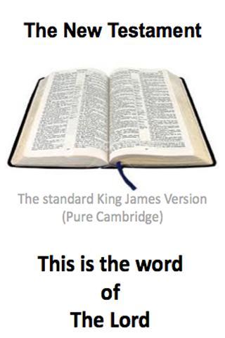 New Testament V2