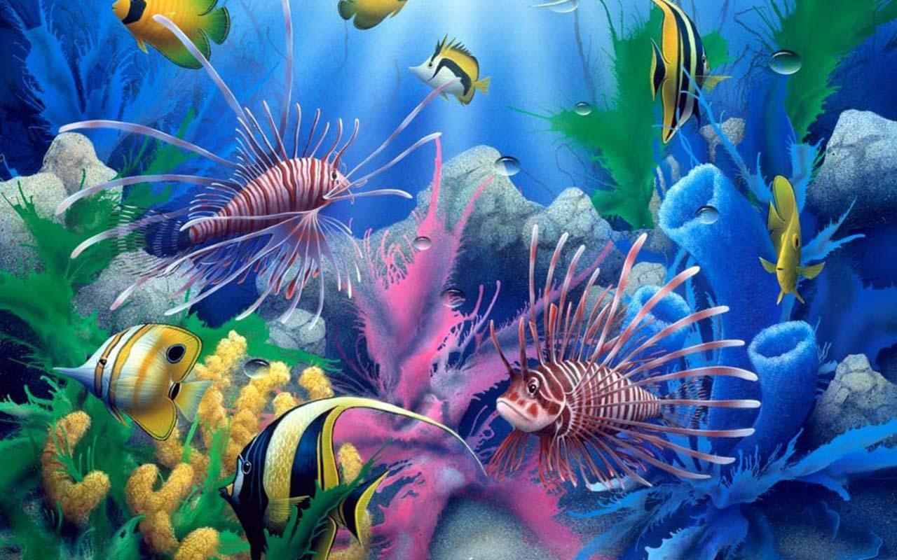 Aquarium HD Wallpaper Apl Android Di Google Play