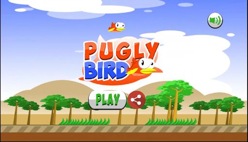 Pugly Bird