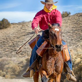 Determined to Ride Hard by M Knight - Sports & Fitness Other Sports ( gallop, horseback, person, cowboy, rider, pony express, pony express rider, horse, run, hat, animal )
