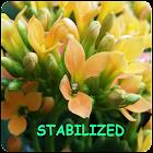 Camera Stabilizer Guide icon