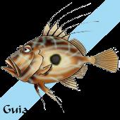 Guía marina de Galicia
