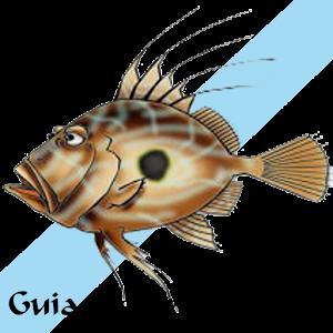 Download   Guía marina de Galicia apk on PC