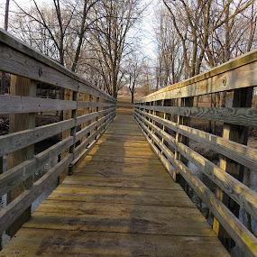 Go after your dreams by Diane Ebert - Uncategorized All Uncategorized ( #parks, #bridges, #paths,  )