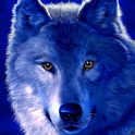 Wolves Wallpapers HD icon