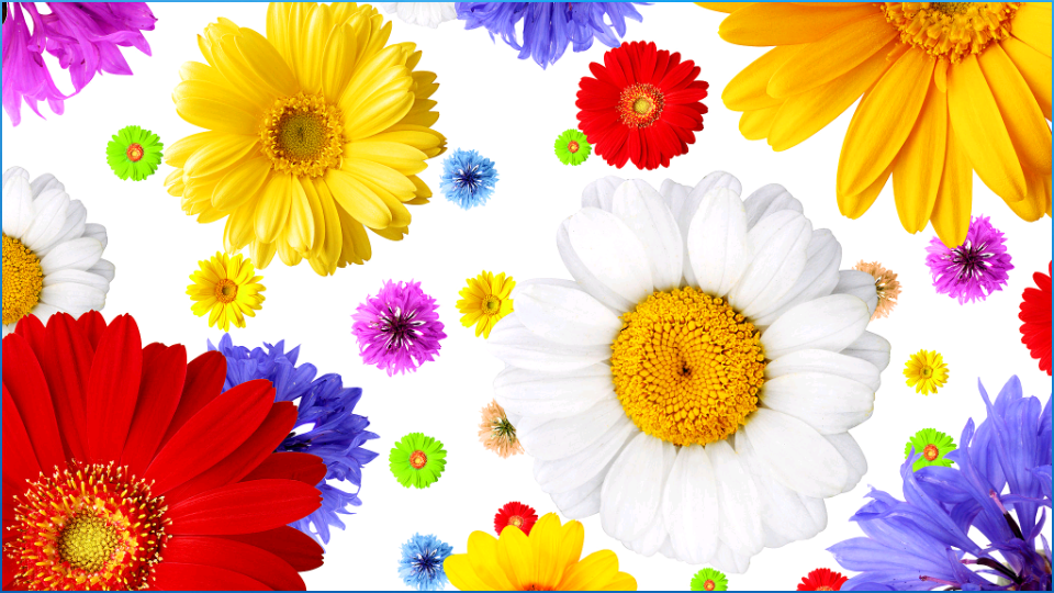 Wonderful Flower Wallpapers Android Apps on Google Play