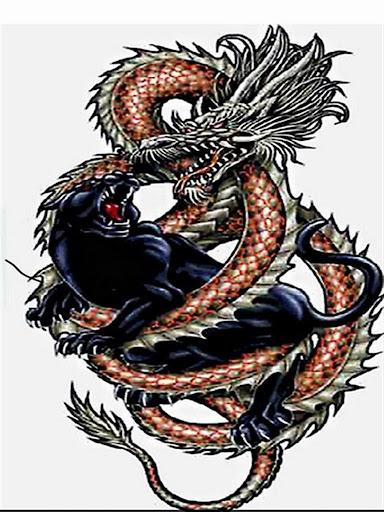 Dragon Spor Kulubü