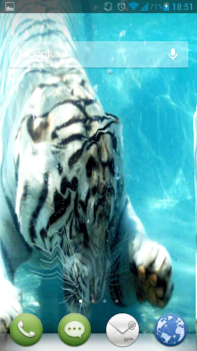 White Tiger Water Touch