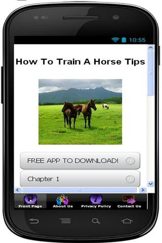 How To Train A Horse Easily