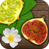 Exotic Fruits & Vegetables PRO