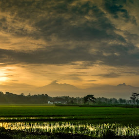 my village by Adang Yusuf - Landscapes Prairies, Meadows & Fields