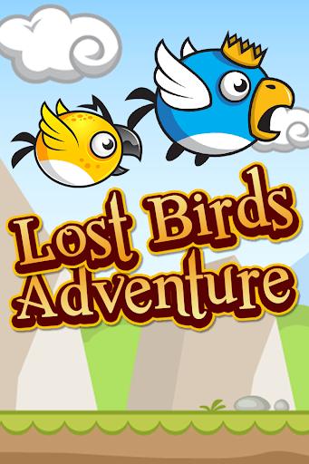 Lost Birds Adventure