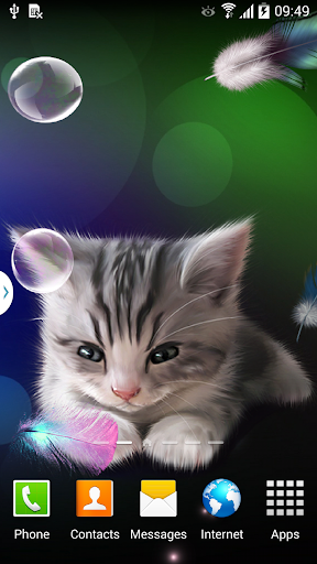 Sleepy Kitten Live Wallpaper