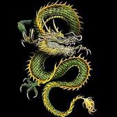 3D lucky dragon3