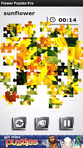 花拼圖 - 免費遊戲