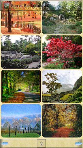 卡通森林背景圖片_森林卡通背景圖片_卡通圖片背景 - 唯美圖片網