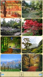 森林背景|玩攝影App免費|玩APPs