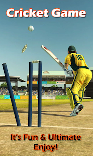 Cricket 2014 - screenshot thumbnail