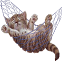 Sleeping Cat logo