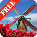 Tulip Windmill Free icon