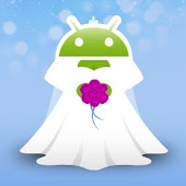 Wedding Plandroid