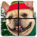 Zoo Puzzle 2 in 1 icon