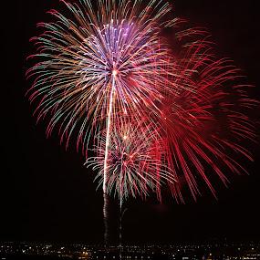 Sky flowers by Lenny Sharp - Abstract Fire & Fireworks ( sky, japan, fireworks, celebration, yokohama )