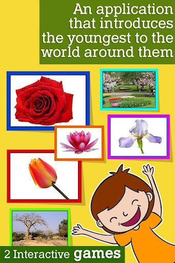 Montessori Flowers and Seasons