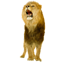 Lion Sticker widget logo