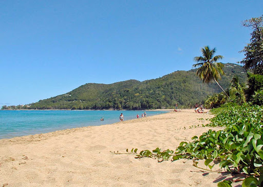 beach-basse-terre-guadeloupe - One of the beautiful beaches in Basse-Terre, Guadeloupe.