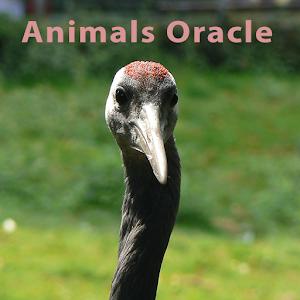 Animals Oracle Premium