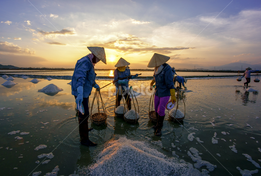 Salt by Thảo Nguyễn Đắc - People Group/Corporate